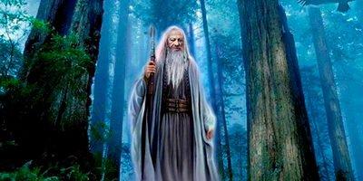 I Druidi